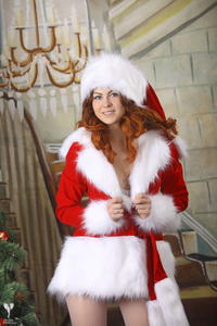 http://img193.imagevenue.com/loc218/th_531062304_silver_angels_Sandrinya_I_Christmas_1_016_123_218lo.jpg