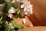 Mikhaila - Bodyscape: Summer Bouquet40uoos22yp.jpg